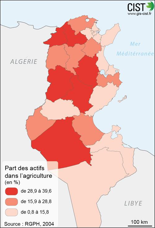 Tunisie : part des actifs dans l'agriculture - Carte réalisée par Timothée Giraud (CIST)